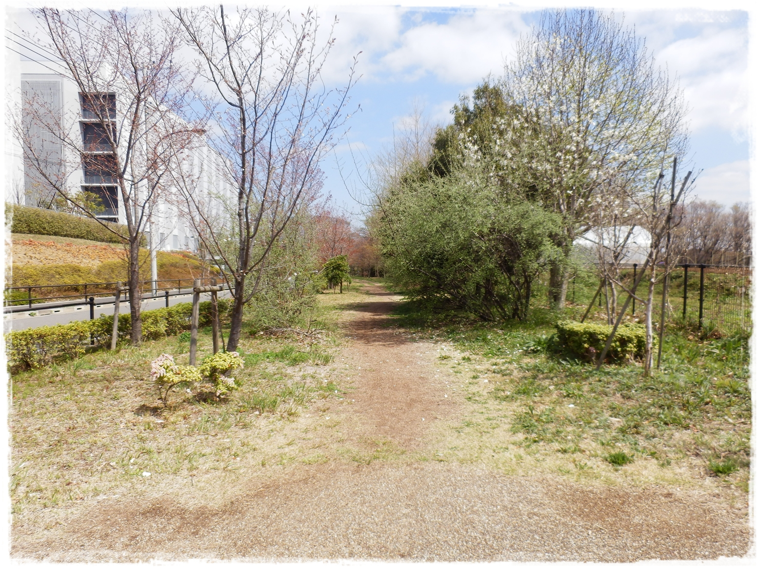 横山の道35