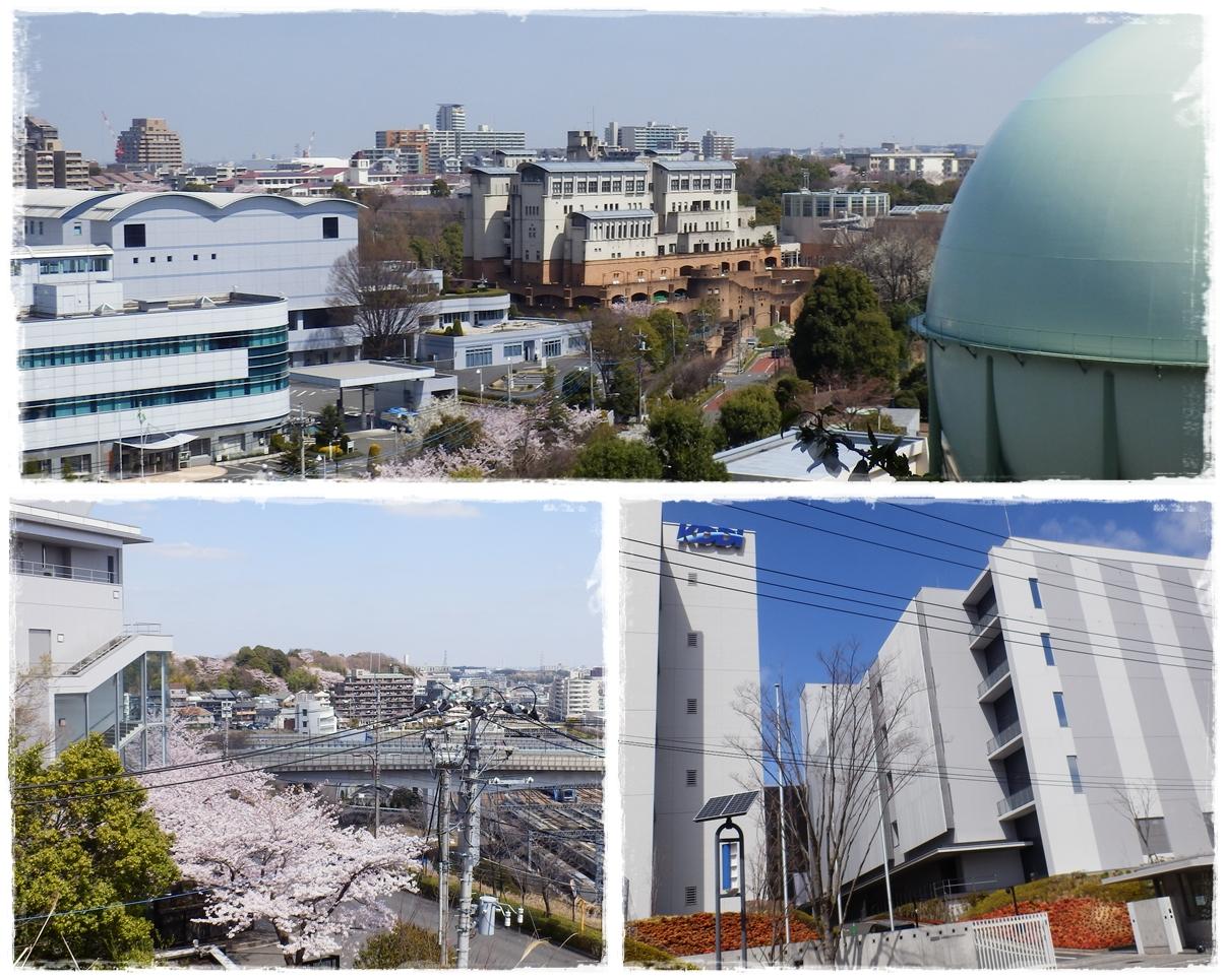 横山の道page