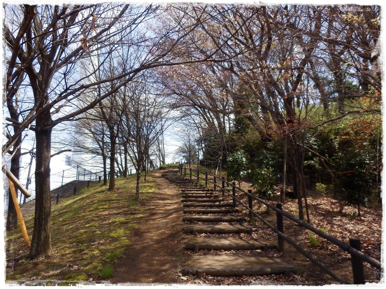 横山の道36