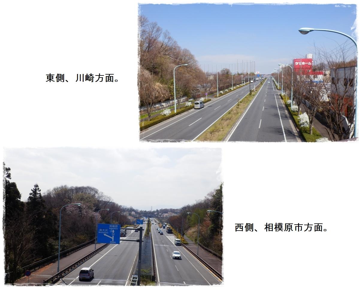 page横山の道3