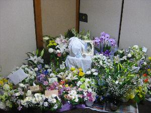 blog2246.jpg