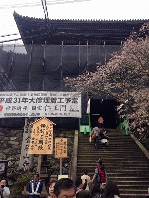 吉野千本桜4