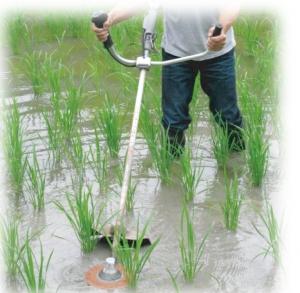 水草カッター使用