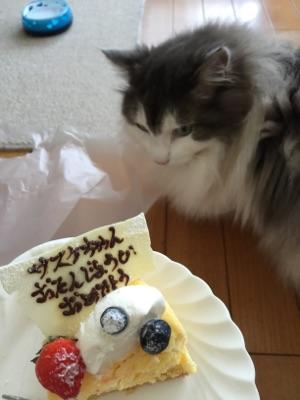 お誕生日2