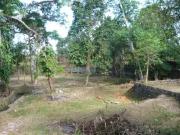 チャングー土地 2640㎡