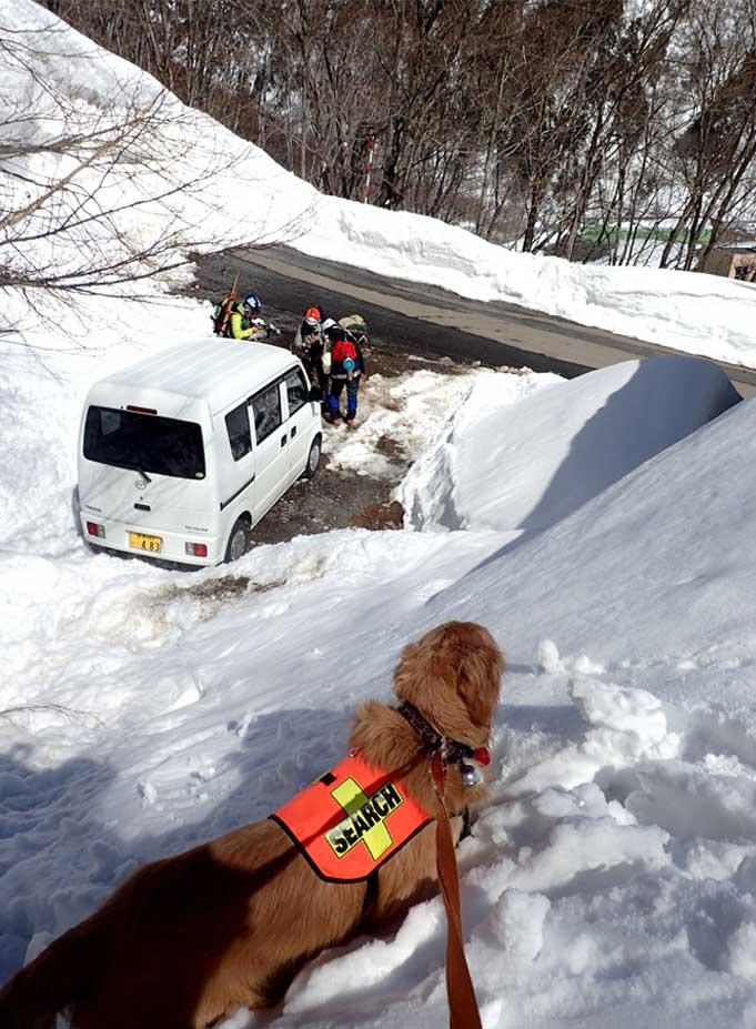 3月27日 雪洞づくり(3)