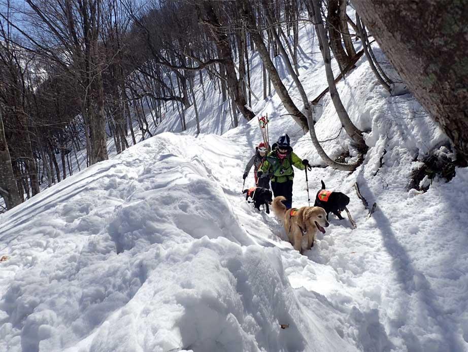 3月27日 雪洞づくり(4)