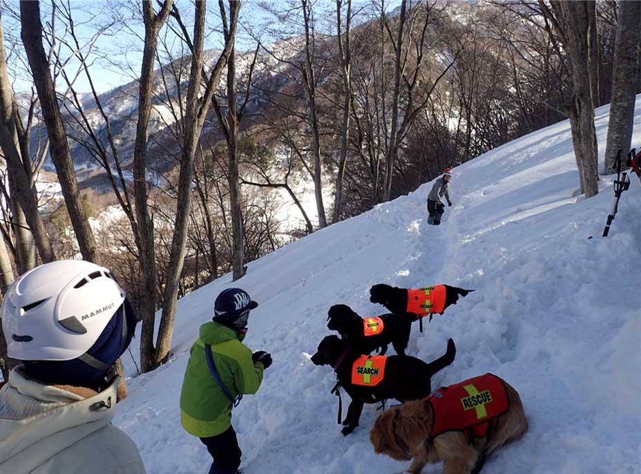 3月27日 雪洞づくり(6)