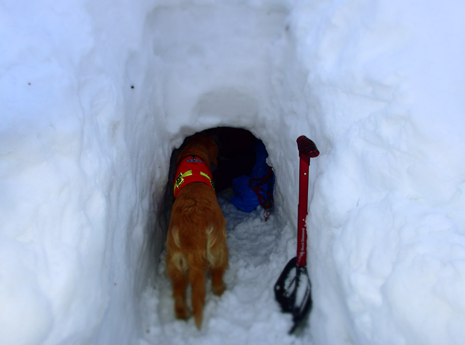 3月27日 雪洞づくり(10)
