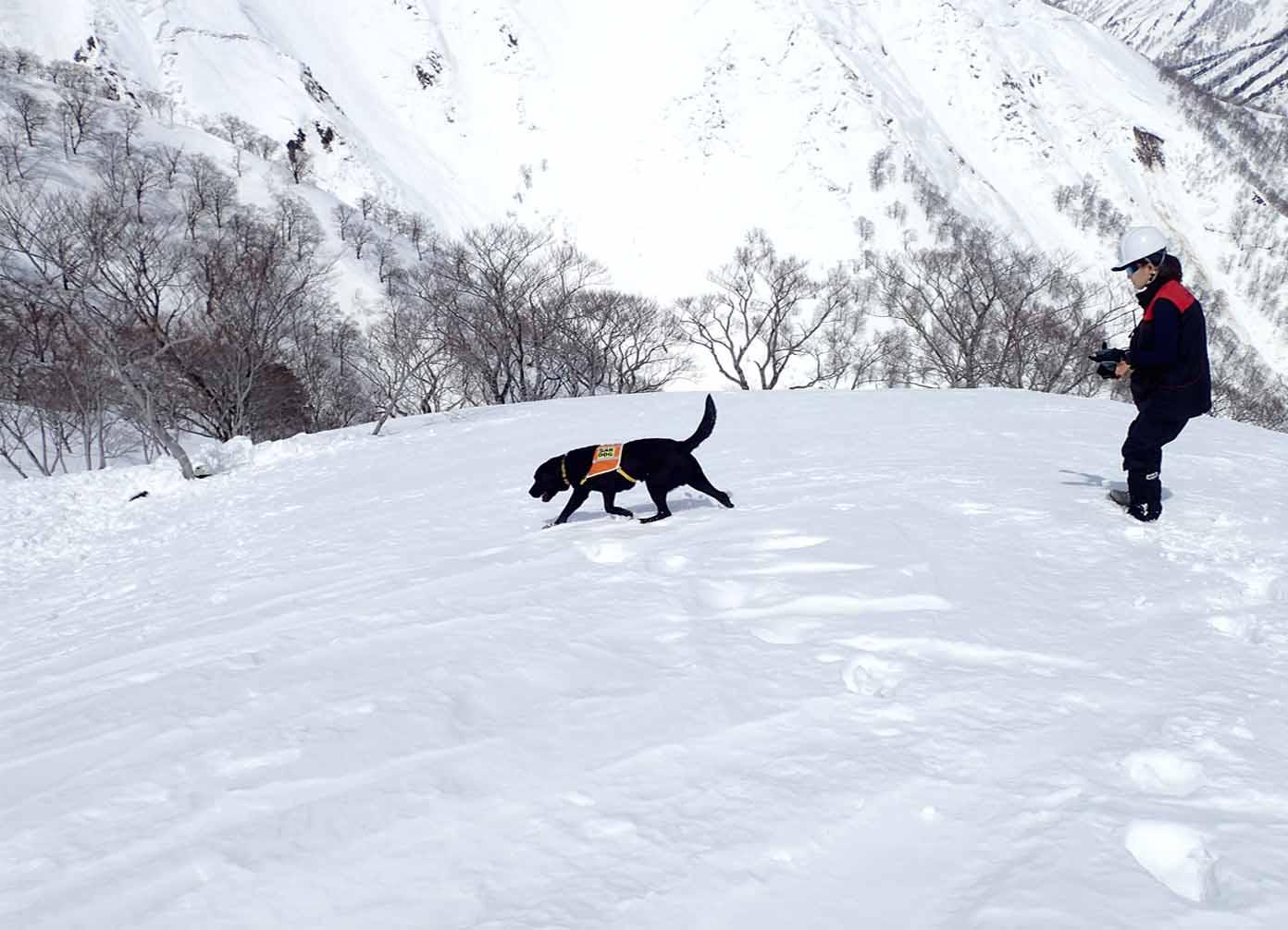3月28日 雪中訓練(6)
