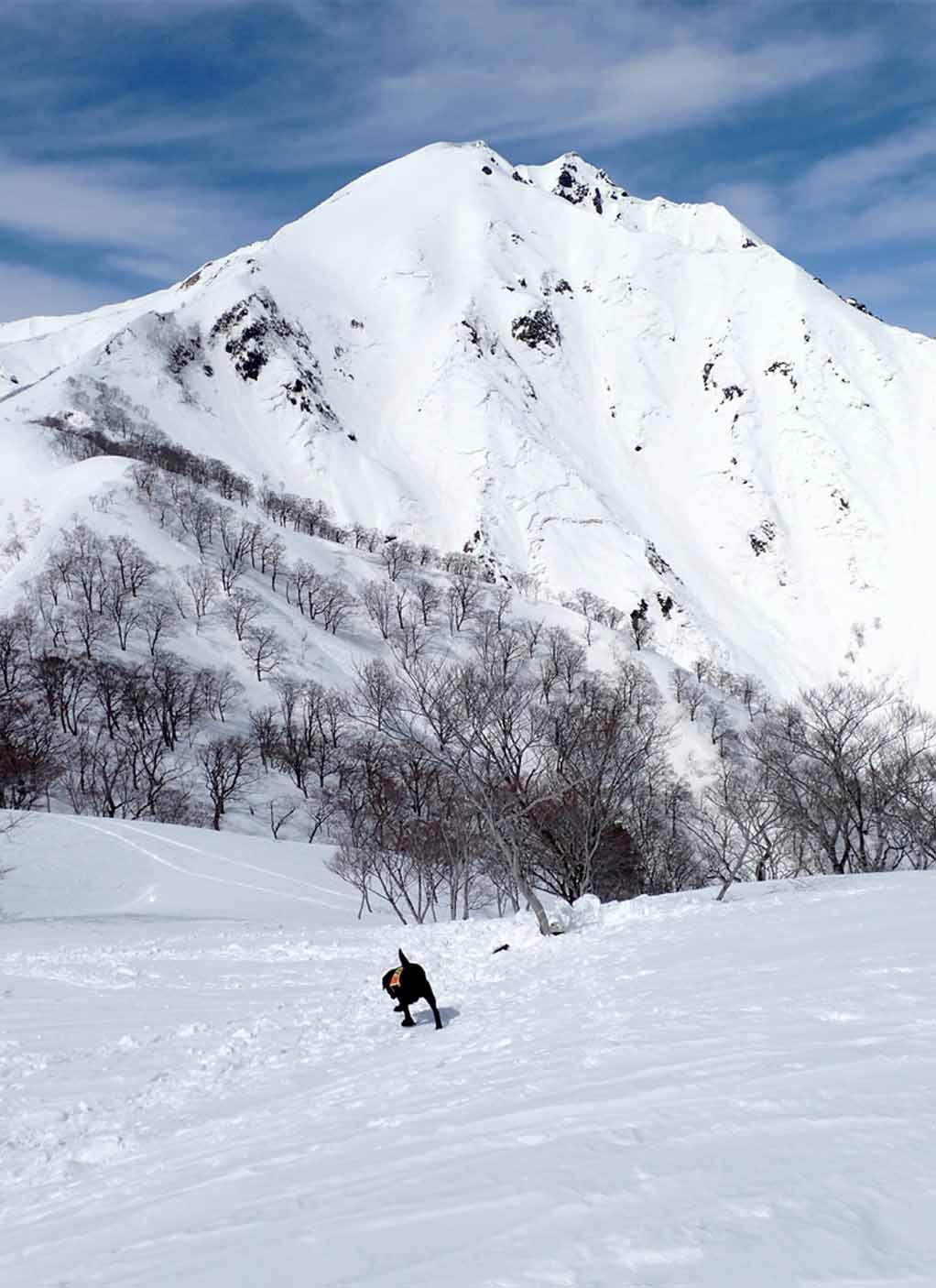 3月28日 雪中訓練(7)