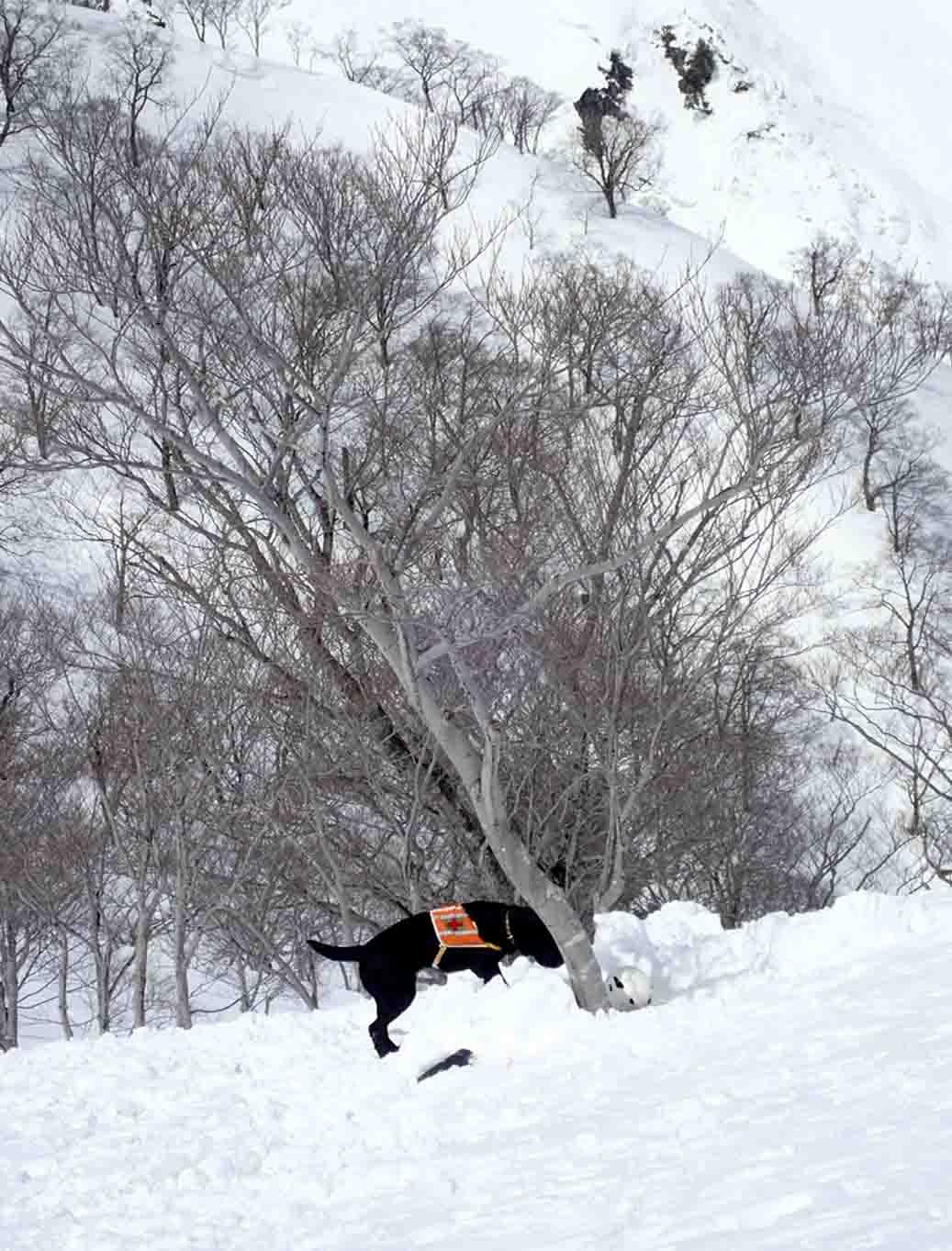 3月28日 雪中訓練(8)
