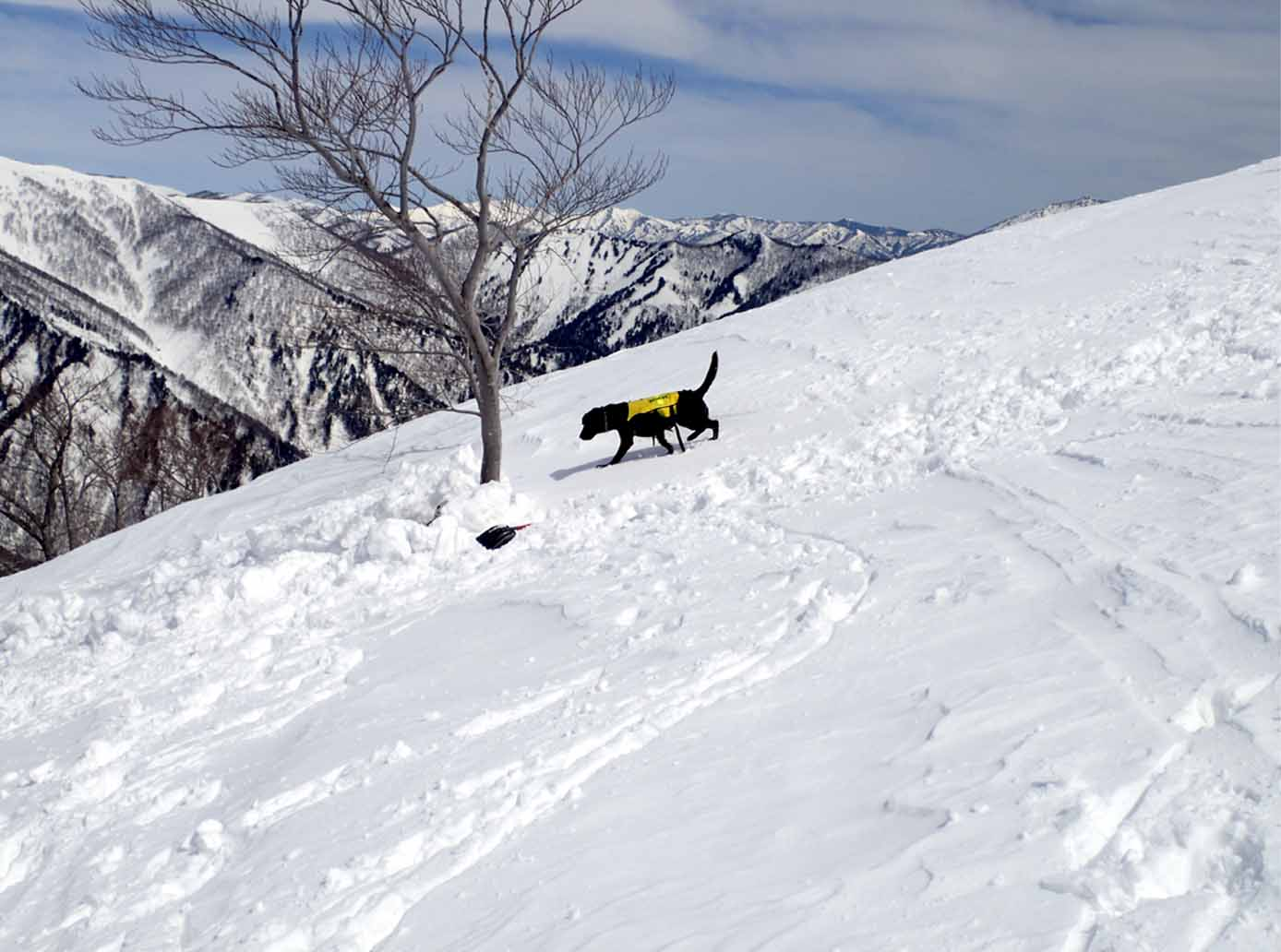 3月28日 雪中訓練(10)