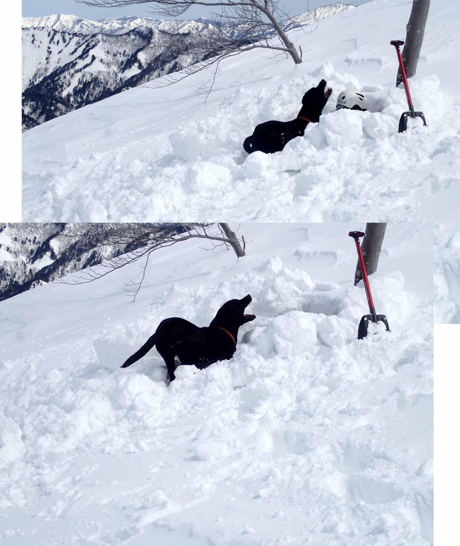 3月28日 雪中訓練(16)