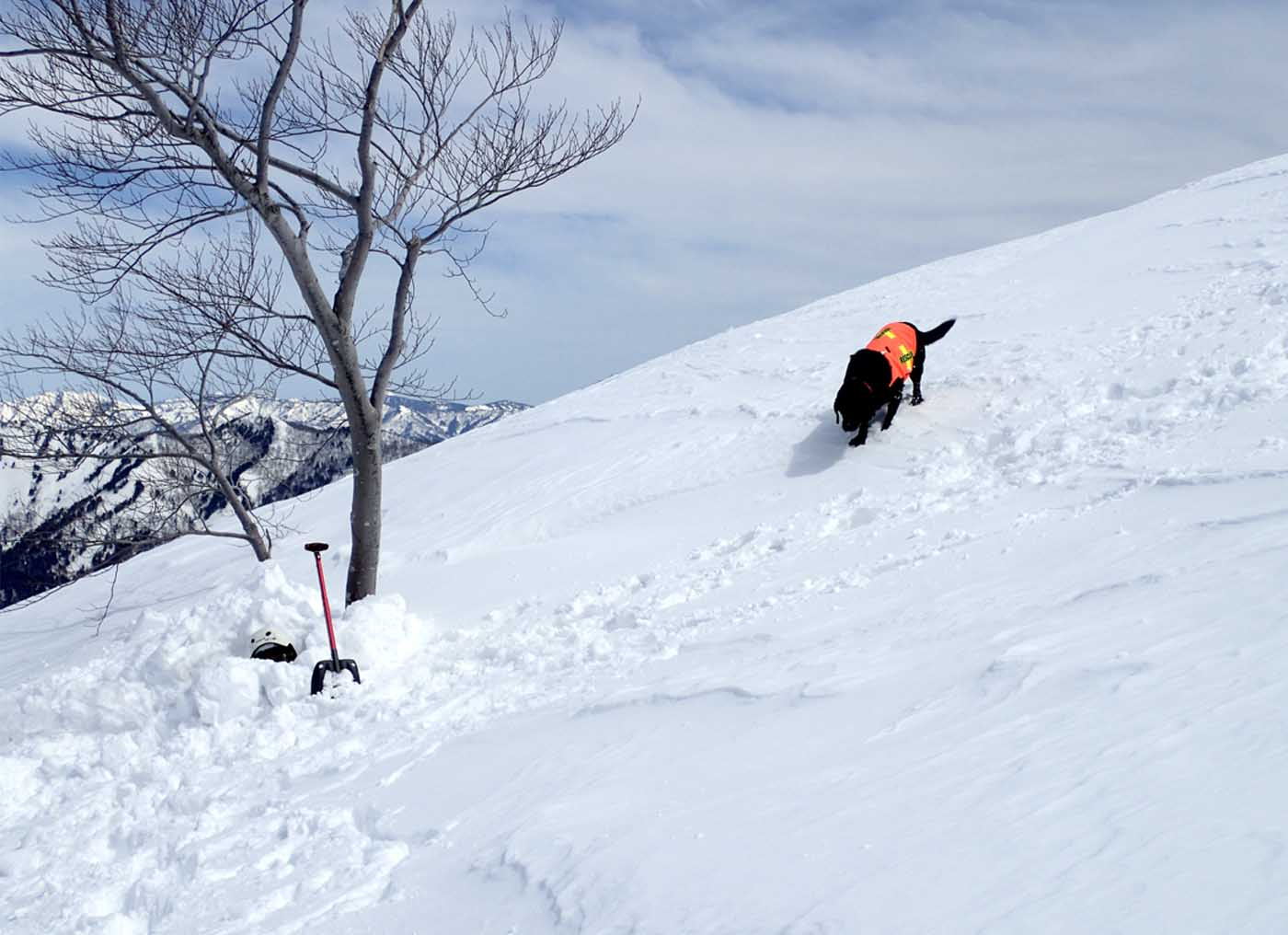 3月28日 雪中訓練(18)