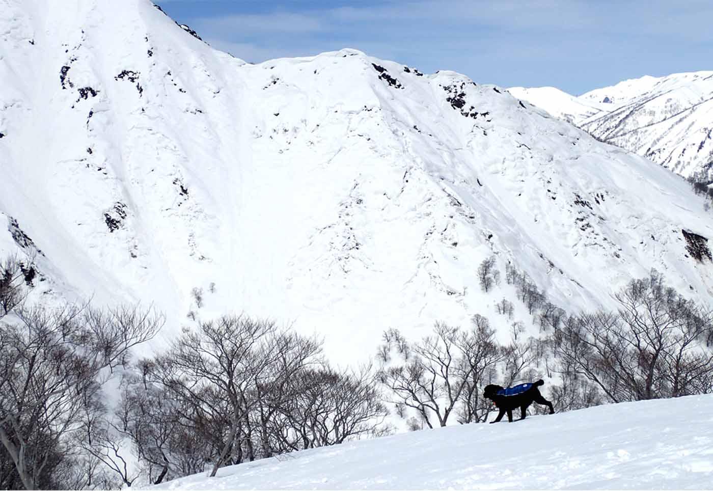 3月28日 雪中訓練(20)