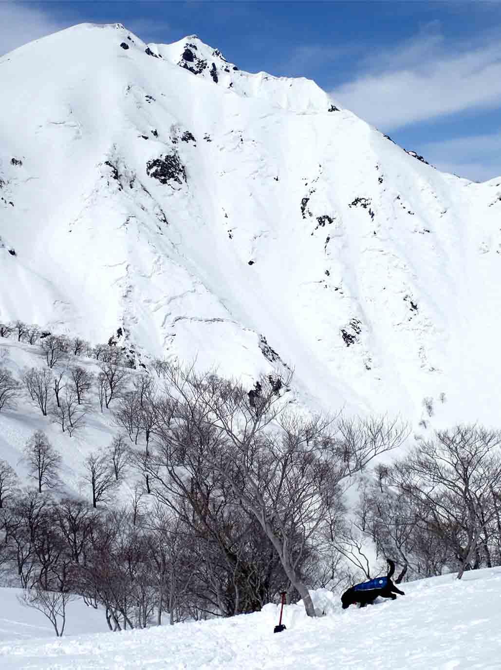 3月28日 雪中訓練(21)