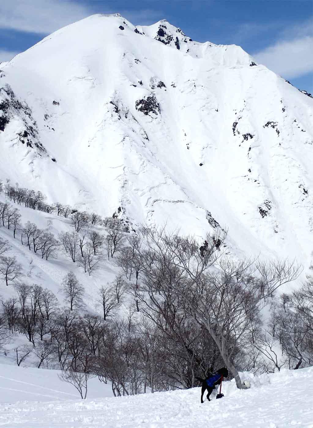 3月28日 雪中訓練(23)