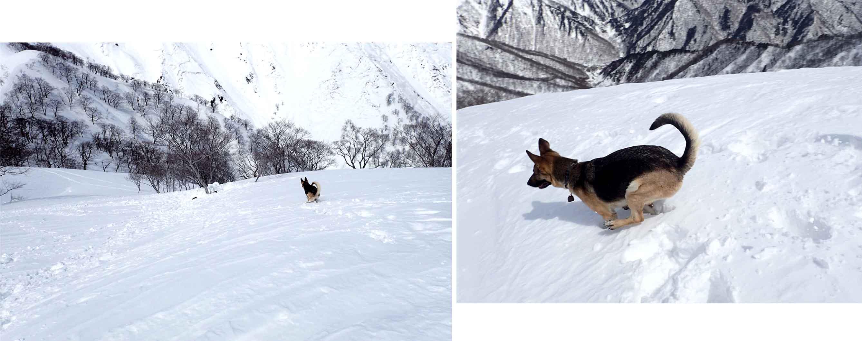 3月28日 雪中訓練(27)