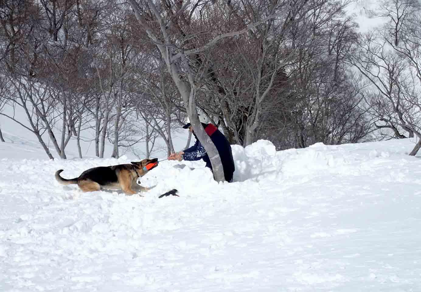 3月28日 雪中訓練(28)