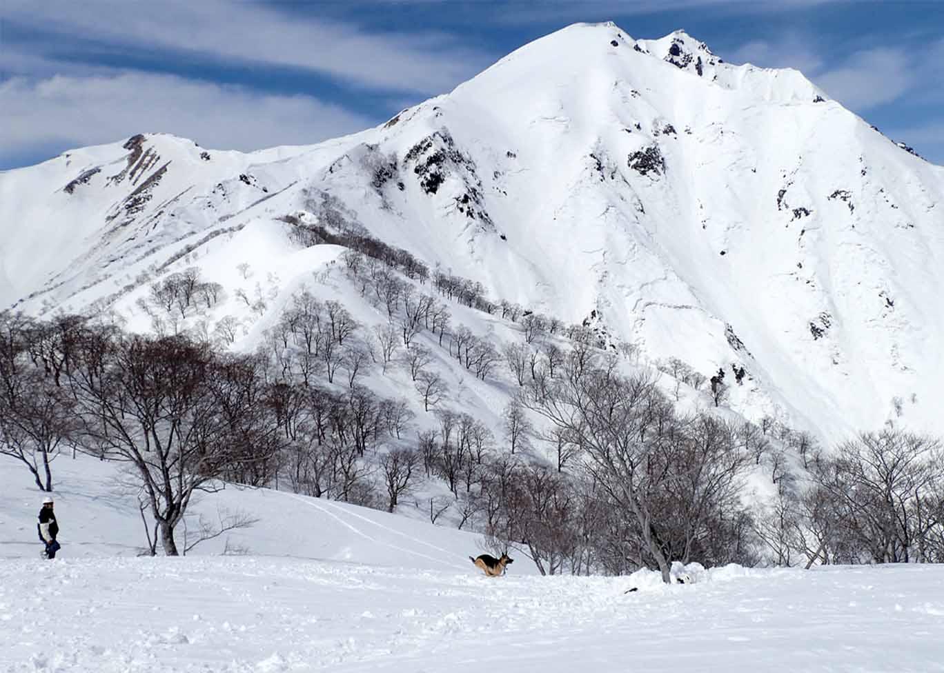 3月28日 雪中訓練(29)