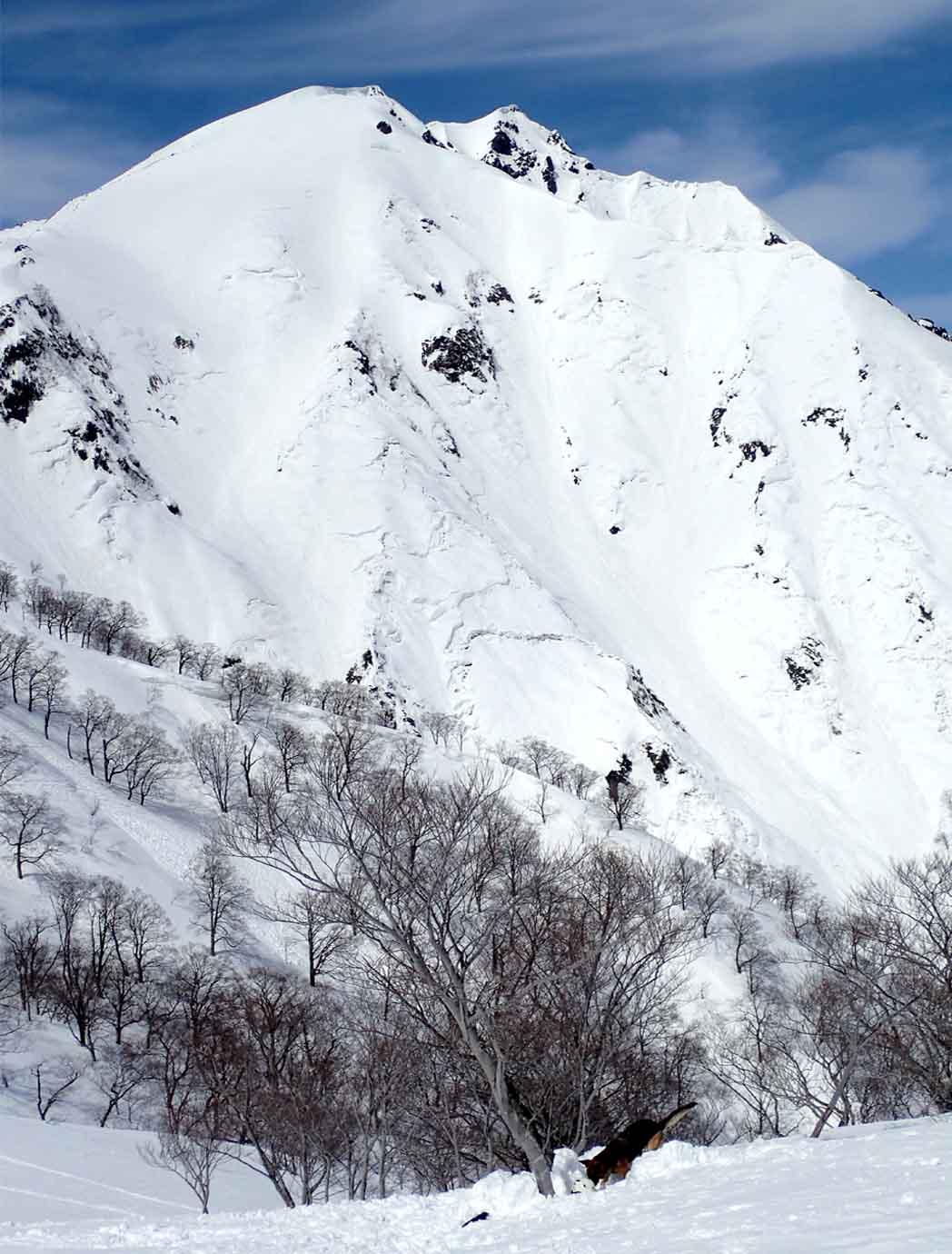 3月28日 雪中訓練(30)