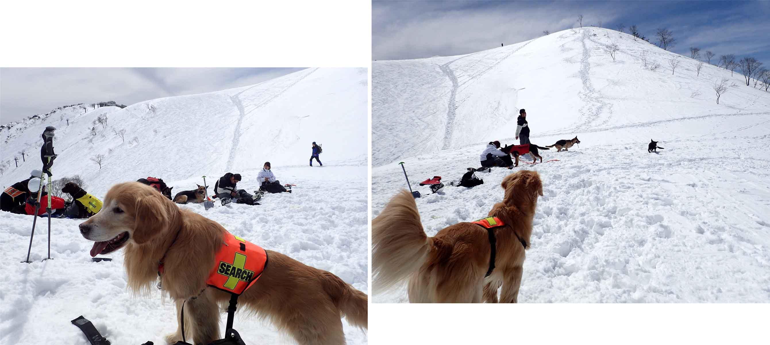 3月28日 雪中訓練(33)