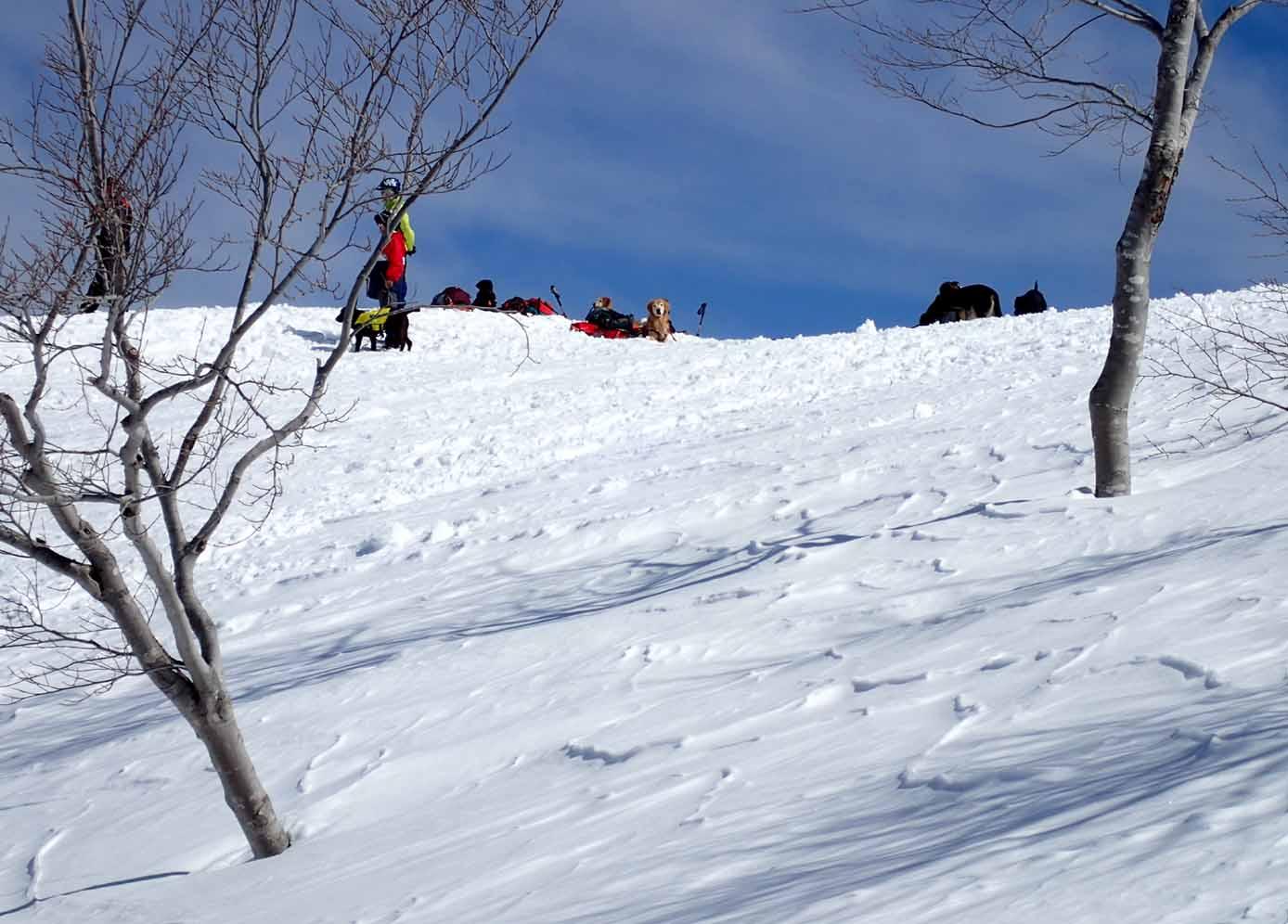3月28日 雪中訓練(35)