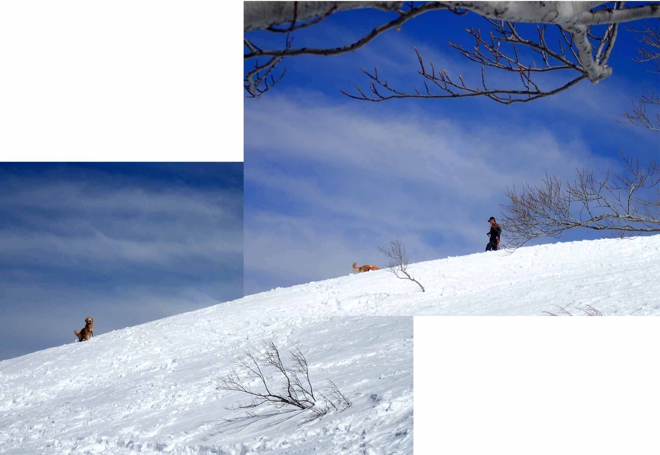 3月28日 雪中訓練(36)