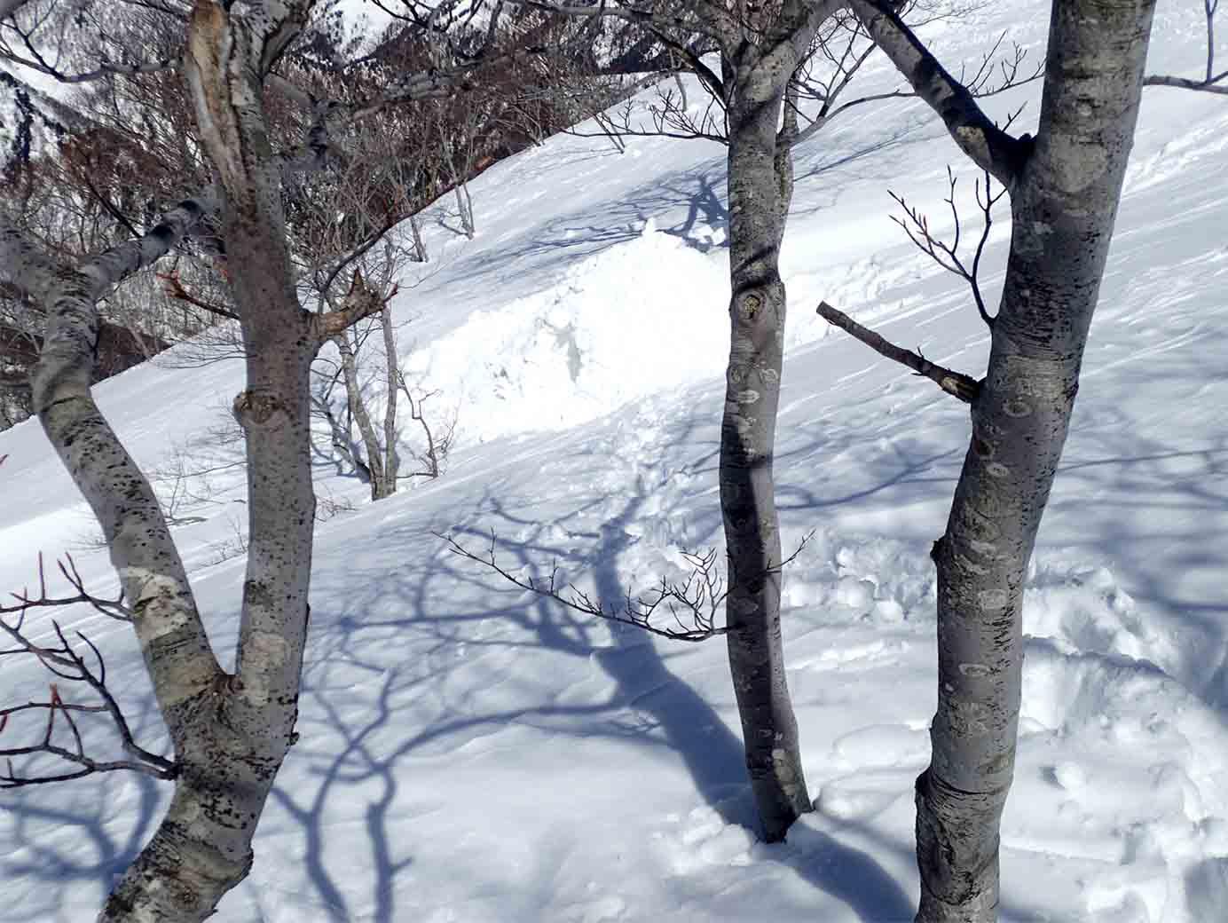 3月28日 雪中訓練(37)