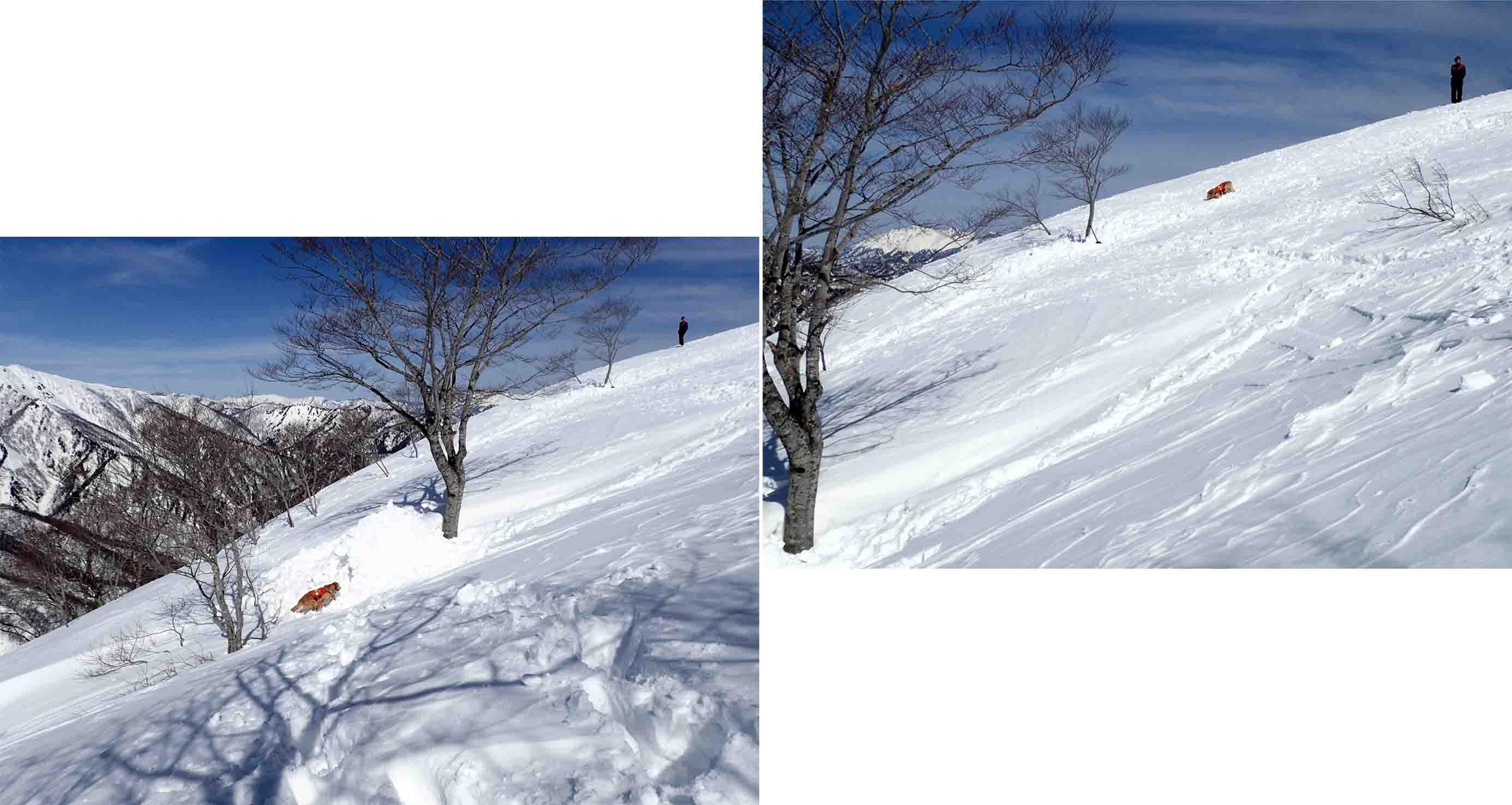 3月28日 雪中訓練(39)