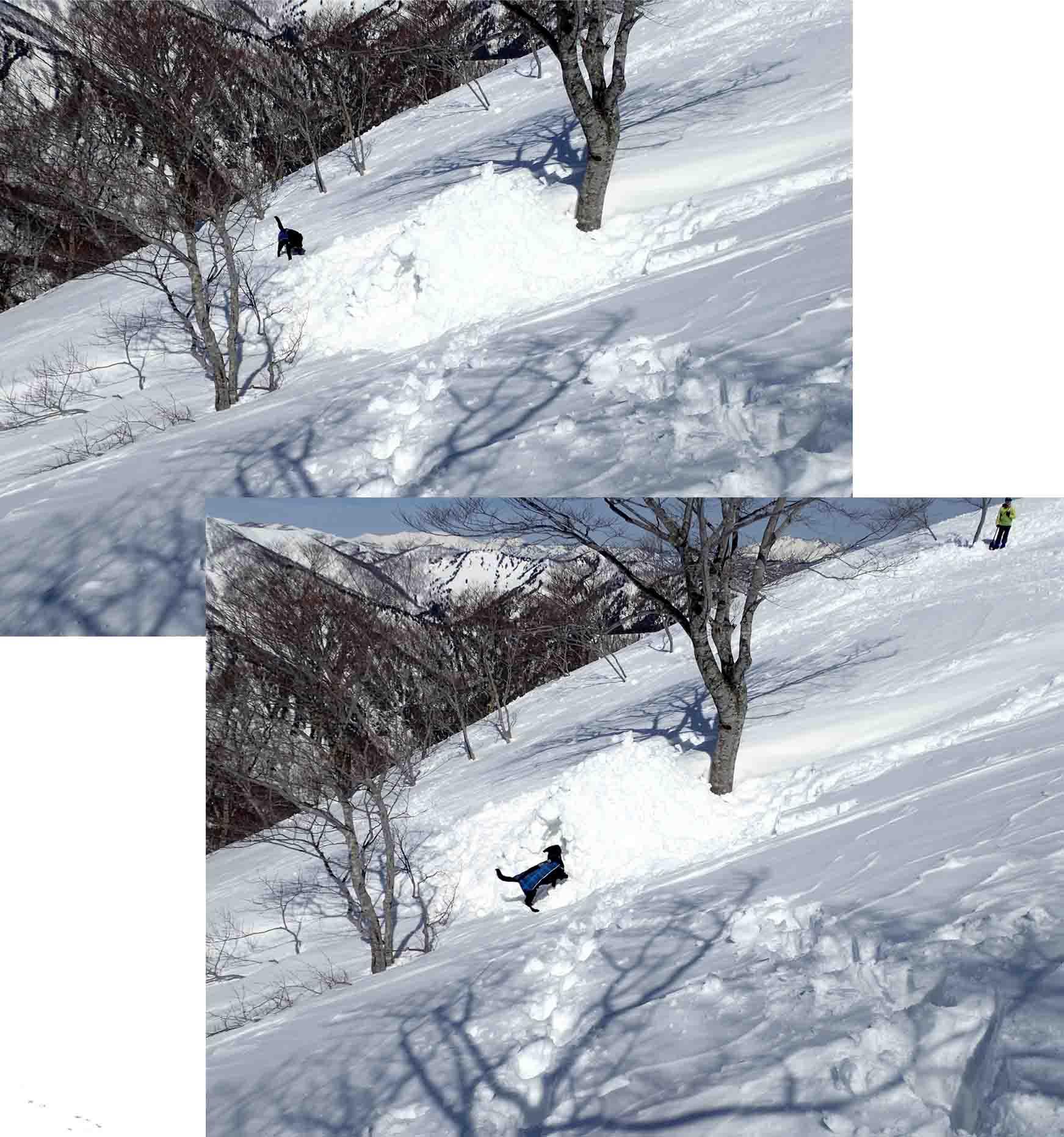 3月28日 雪中訓練(40)