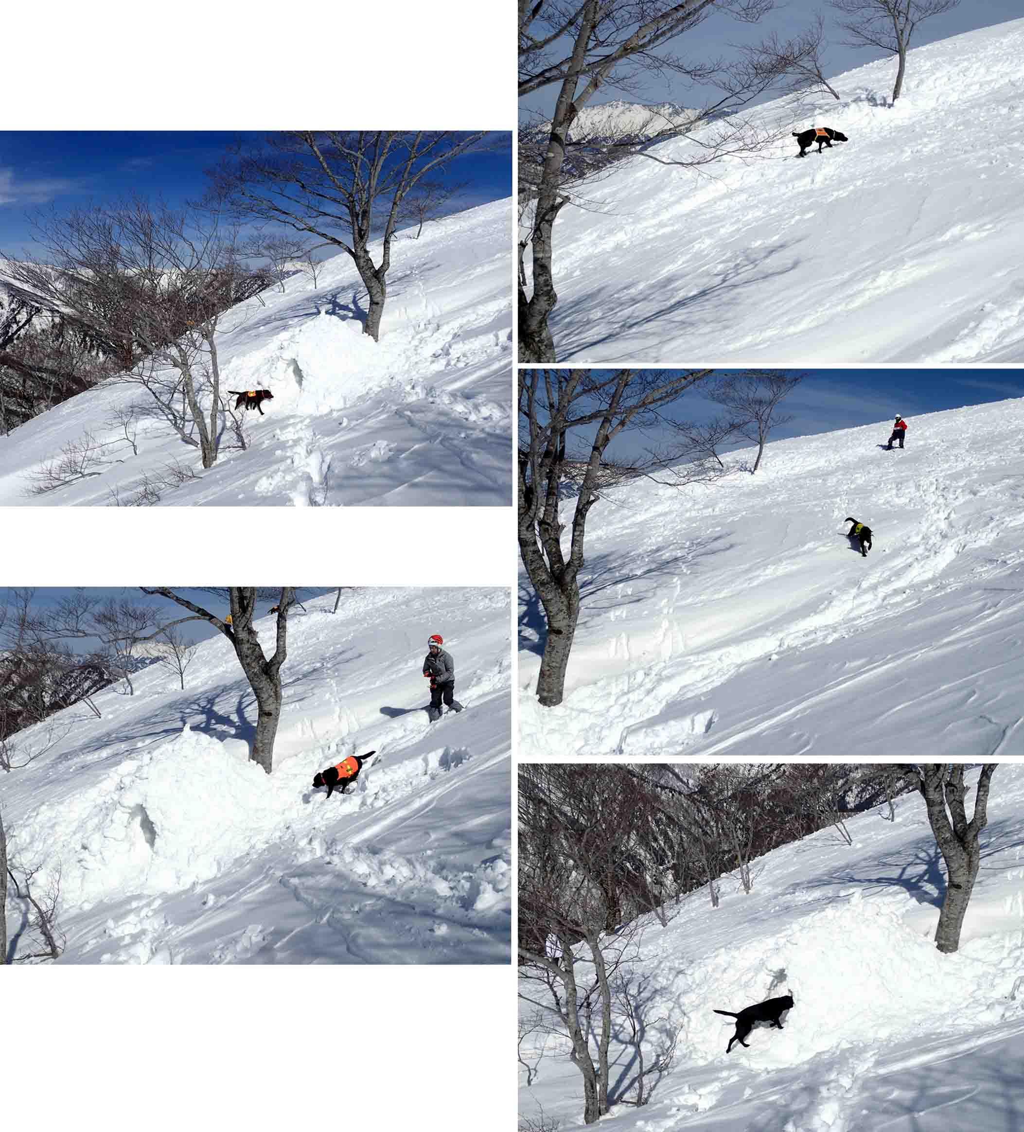 3月28日 雪中訓練(41)