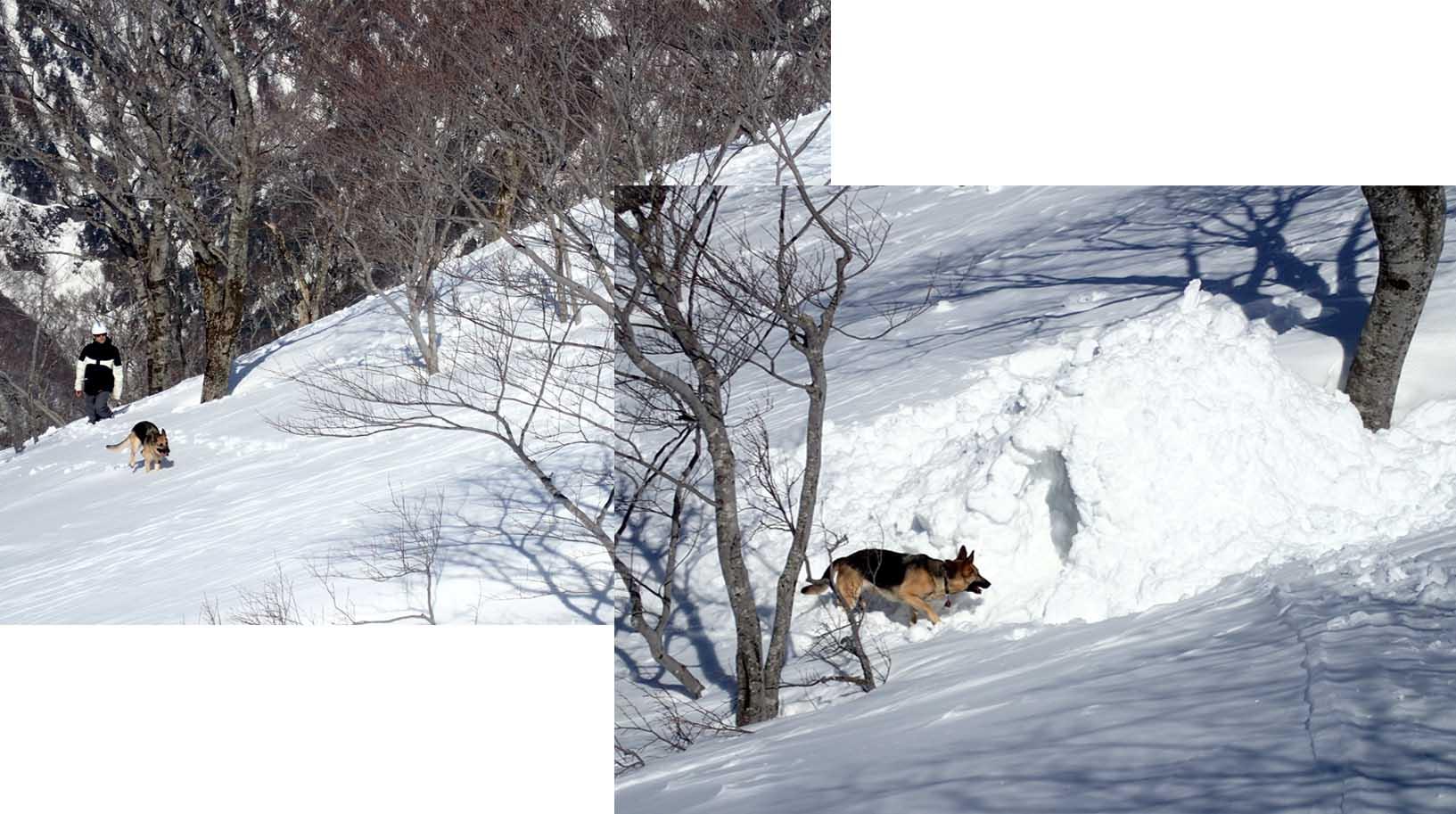 3月28日 雪中訓練(44)