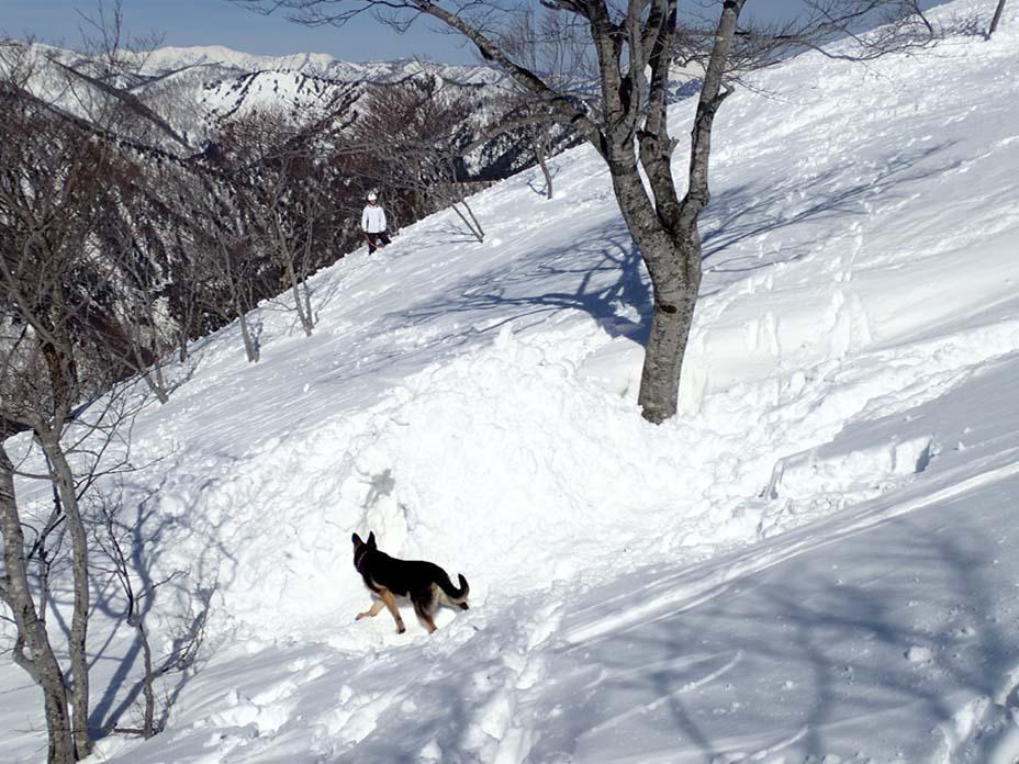 3月28日 雪中訓練(45)