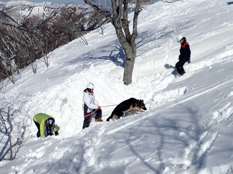 3月28日 雪中訓練(46)