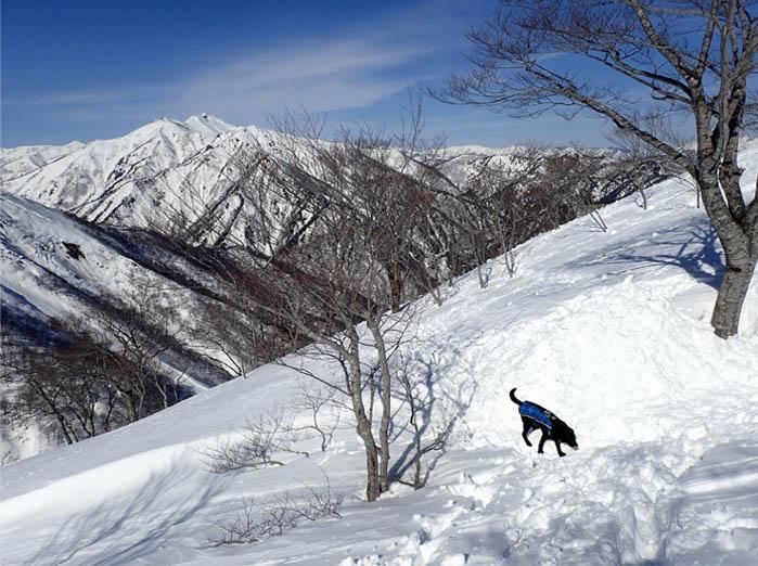 3月28日 雪中訓練(47)