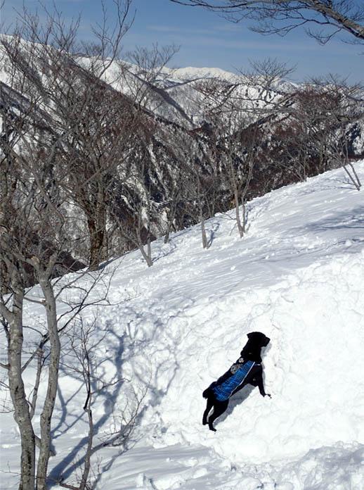 3月28日 雪中訓練(48)