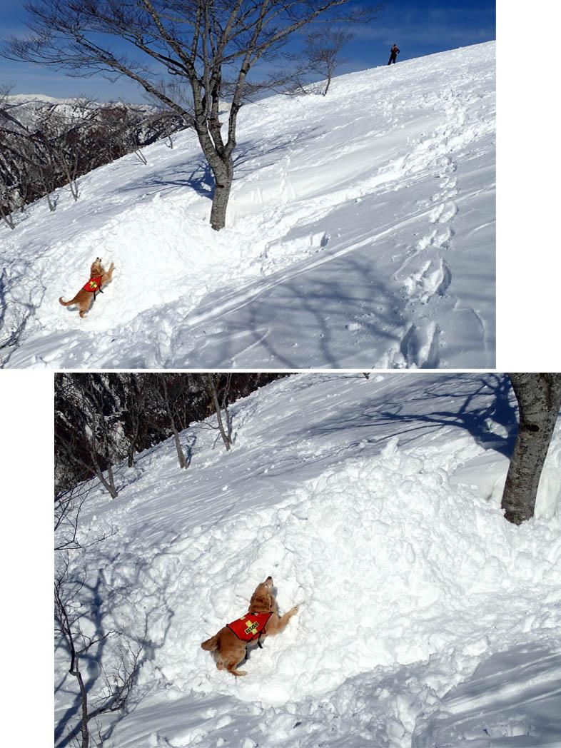 3月28日 雪中訓練(49)