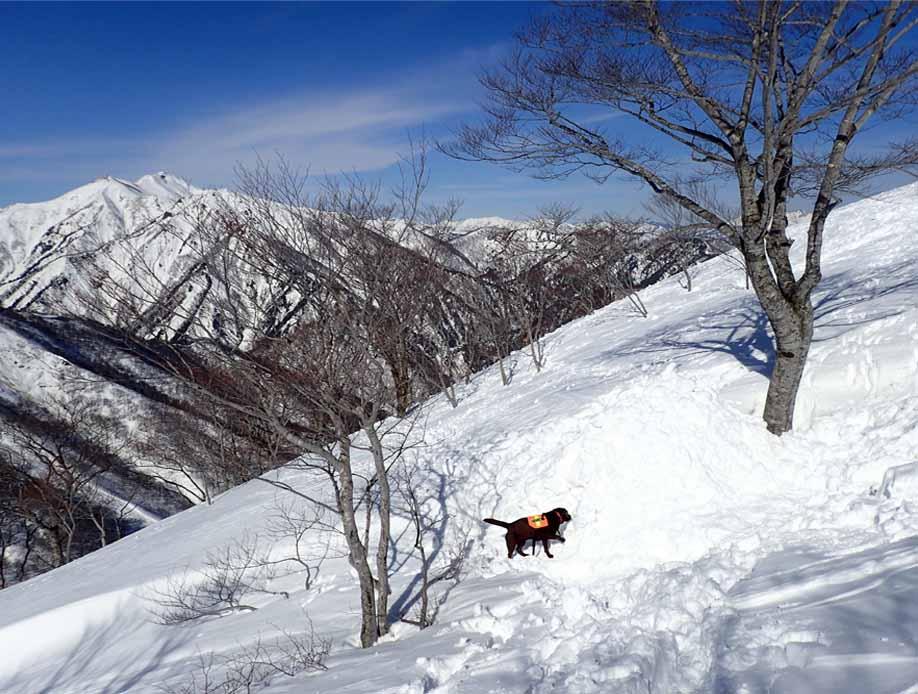 3月28日 雪中訓練(52)