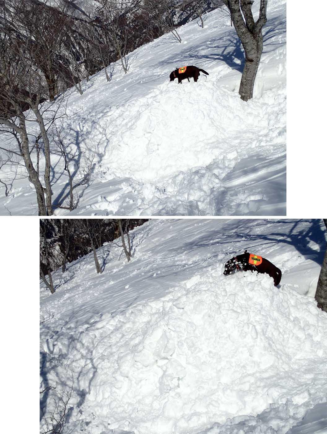 3月28日 雪中訓練(53)
