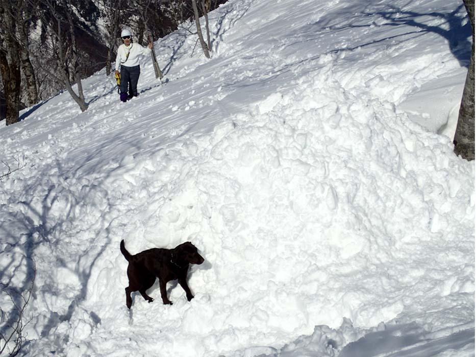 3月28日 雪中訓練(54)