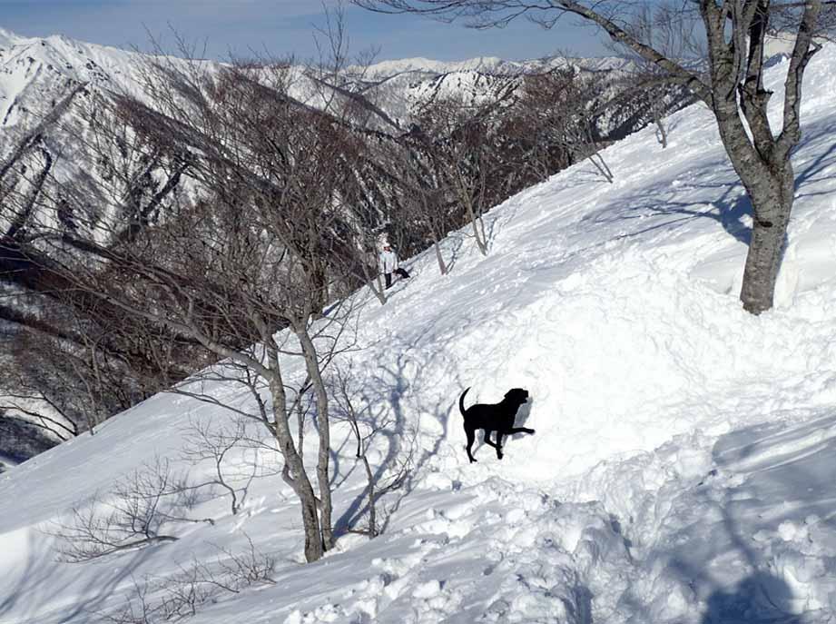 3月28日 雪中訓練(55)