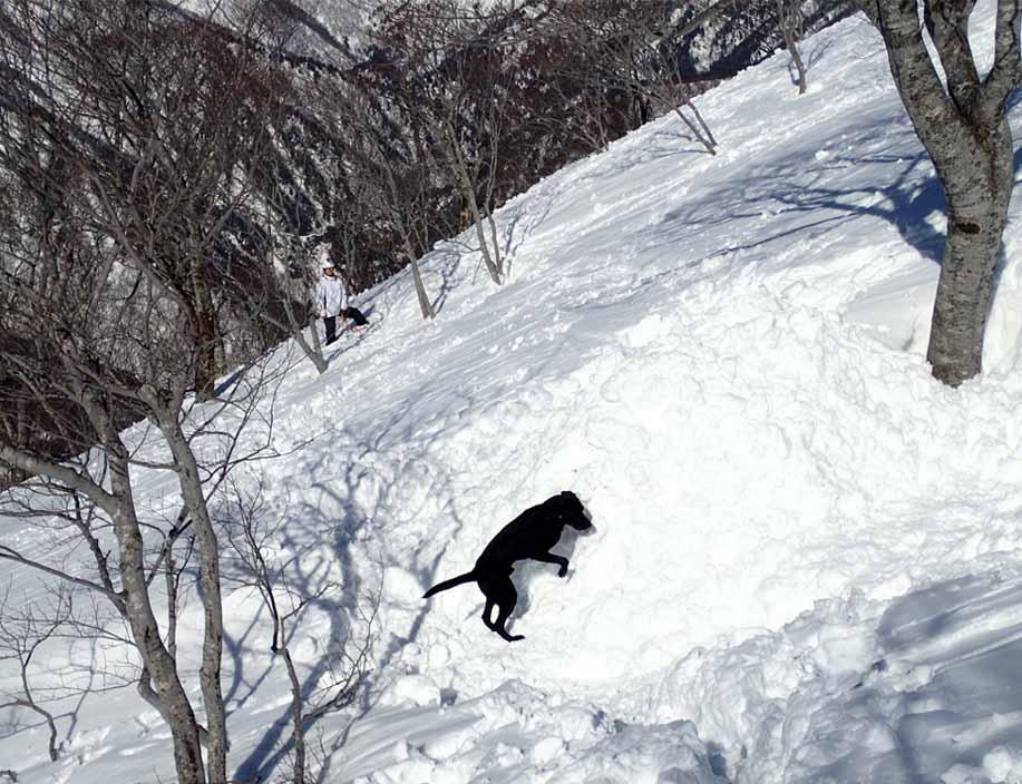 3月28日 雪中訓練(57)