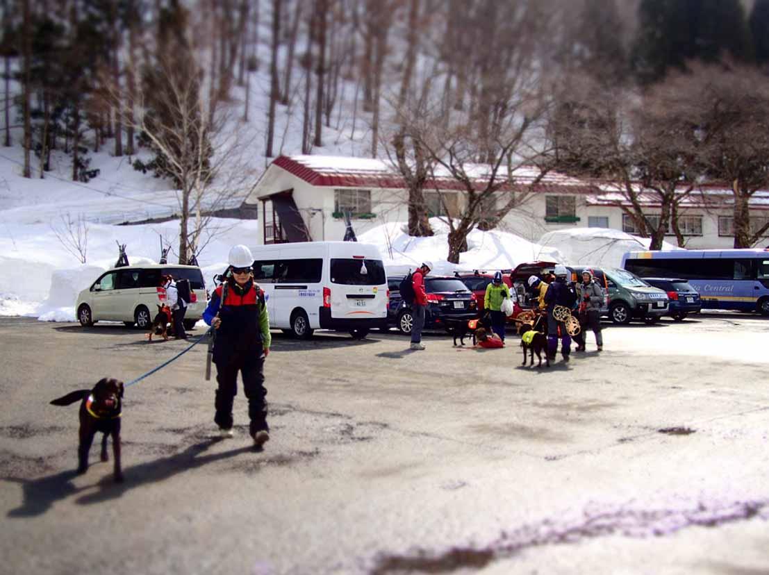 3月29日 雪中訓練(2)