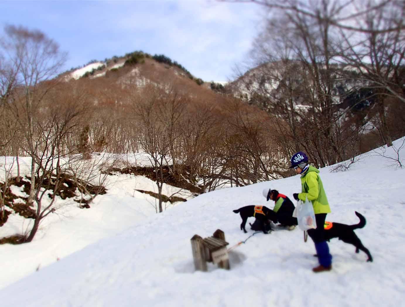 3月29日 雪中訓練(3)