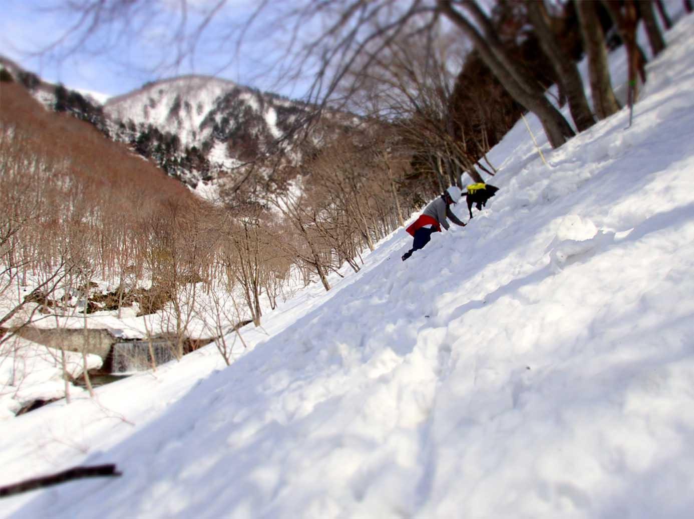 3月29日 雪中訓練(18)