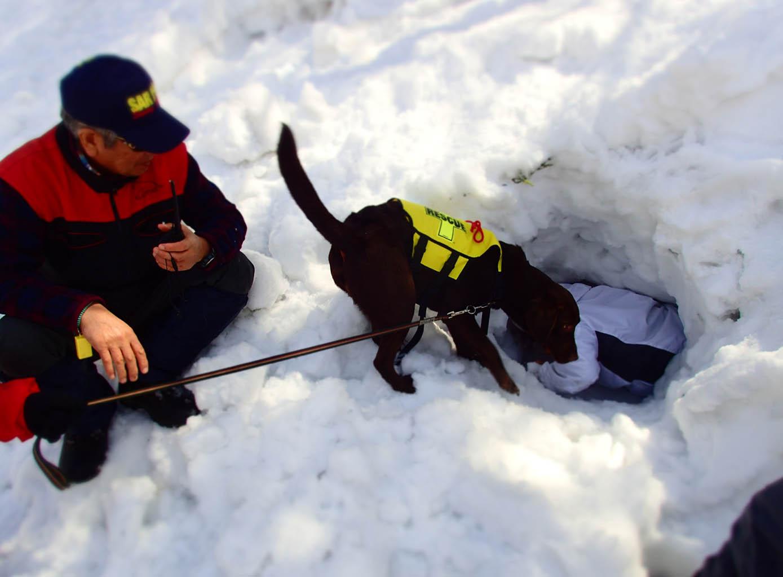 3月29日 雪中訓練(22)