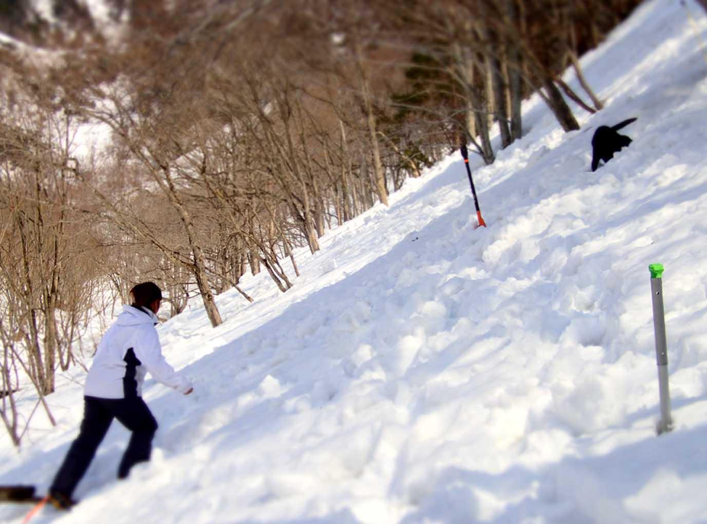 3月29日 雪中訓練(25)