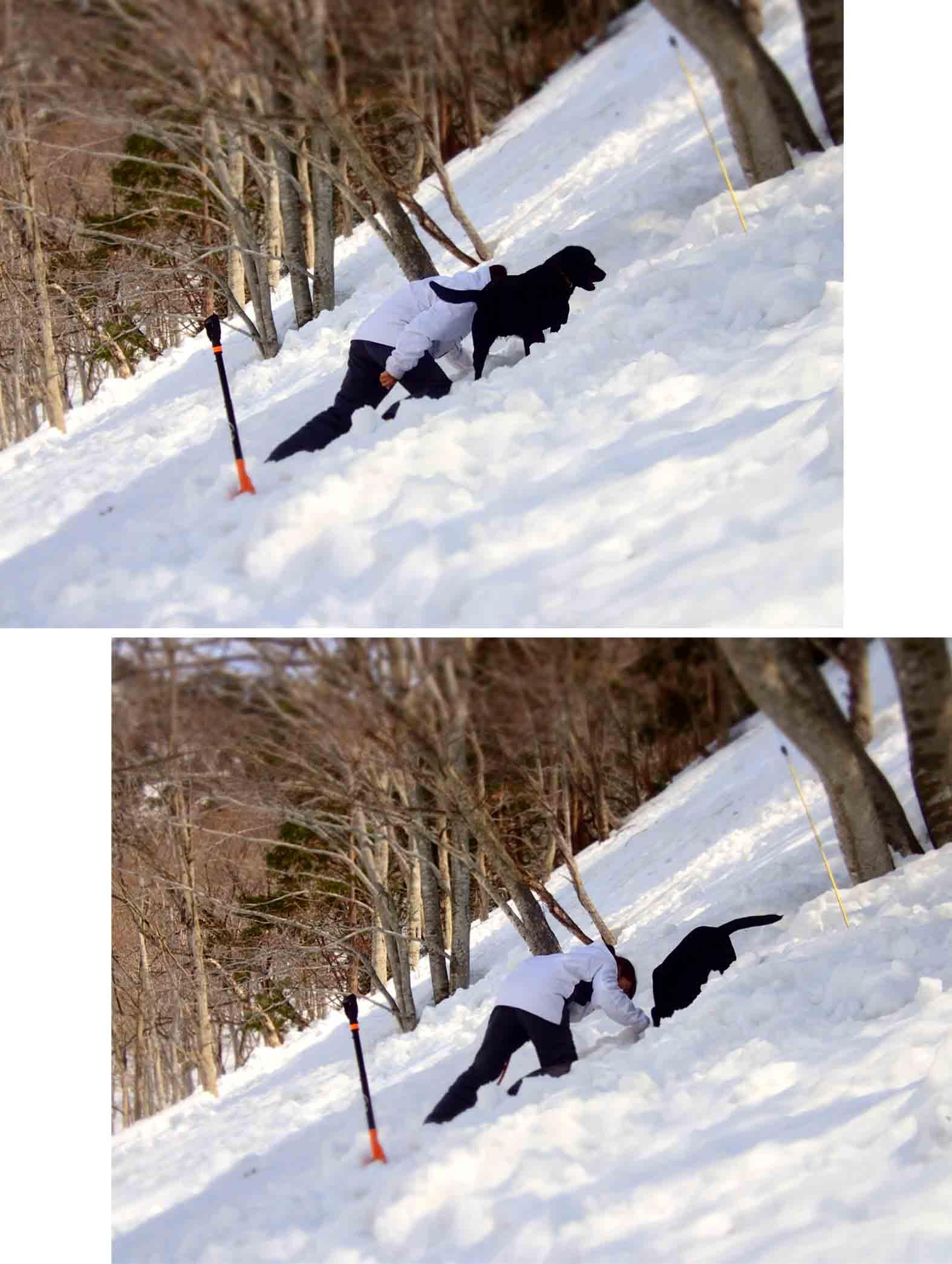 3月29日 雪中訓練(27)